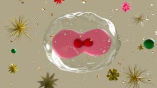 細胞膜 浸透圧